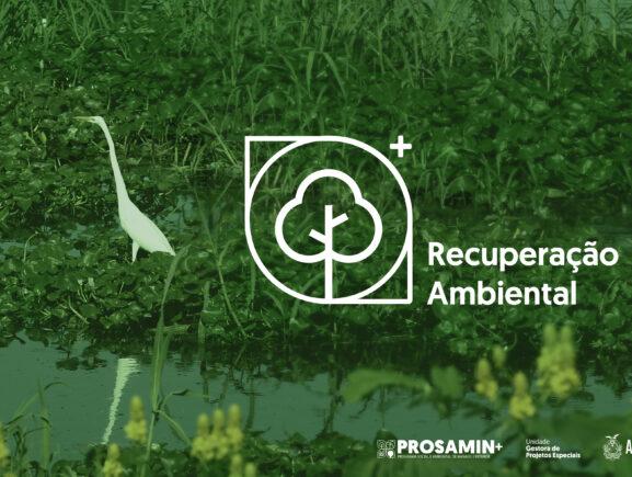 + Ambiental